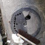 ממצאים חמורים התגלו בסניף דומינוס פיצה בחיפה